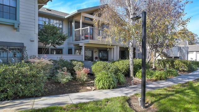 1622 Via Laguna #7, San Mateo, CA 94404 (#ML81732704) :: Fred Sed Group