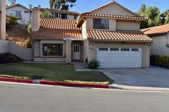 10224 Fairhill Dr, Spring Valley, CA 91977 (#180066384) :: Ardent Real Estate Group, Inc.