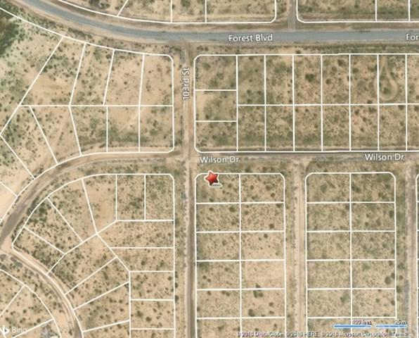 0 Apn 209-090-29, California City, CA  (#PW18286559) :: Fred Sed Group