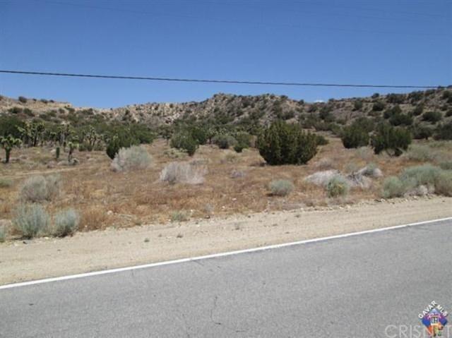 0 106 St East Nr X15, Juniper Hills, CA 93543 (#SR18287151) :: Fred Sed Group