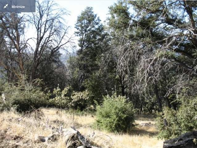 7967 High Hill Rd, Julian, CA 92036 (#180066717) :: Fred Sed Group
