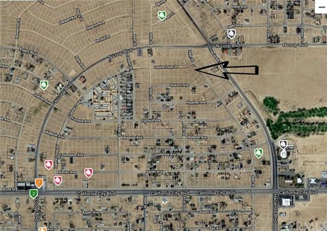 0 Lupine Loop, California City, CA  (#SB18286979) :: Fred Sed Group