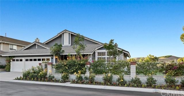 28911 Via Buena Vista, San Juan Capistrano, CA 92675 (#OC18142970) :: Doherty Real Estate Group
