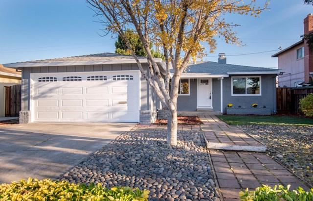 4676 Wheeler Drive, Fremont, CA 94538 (#ML81733047) :: Doherty Real Estate Group