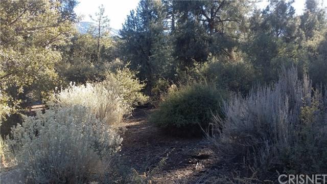 15920 Wildwood, Pine Mountain Club, CA 93222 (#SR18289041) :: Fred Sed Group