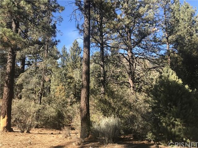 16105 Mil Potrero, Pine Mountain Club, CA 93222 (#SR18292158) :: Kim Meeker Realty Group