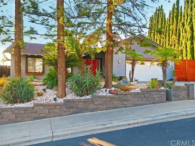 24971 Sebastian Lane, Mission Viejo, CA 92691 (#OC18293063) :: Z Team OC Real Estate
