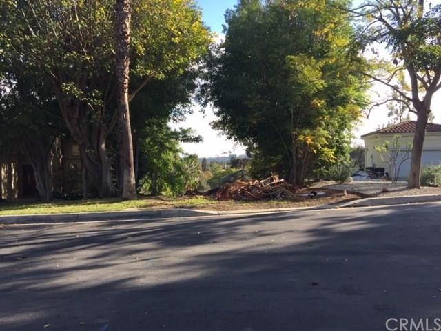 833 Braewood Court, South Pasadena, CA 91030 (#AR19004036) :: The Parsons Team