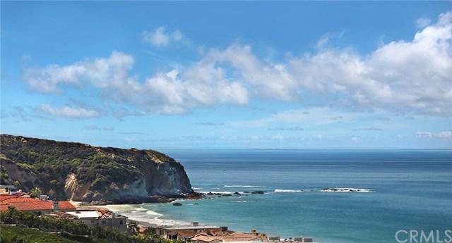 33811 Shackleton, Dana Point, CA 92629 (#LG19003568) :: Berkshire Hathaway Home Services California Properties