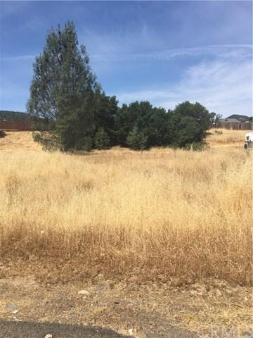 2912 Meadow Creek Road, Clearlake Oaks, CA 95423 (#LC19005580) :: California Realty Experts