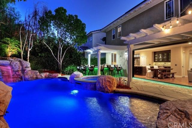 39 Skywood Street, Ladera Ranch, CA 92694 (#OC19007139) :: Z Team OC Real Estate