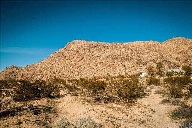 0 Turtle, Joshua Tree, CA 92252 (#JT19008461) :: The Marelly Group | Compass
