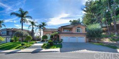 238 Calle Concordia, San Dimas, CA 91773 (#AR19010361) :: Kim Meeker Realty Group