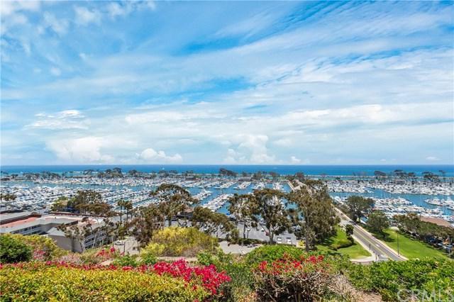 24582 Del Prado #207, Dana Point, CA 92629 (#OC19010838) :: Berkshire Hathaway Home Services California Properties