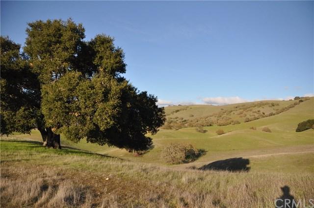 55 Triple Crown Lane, Templeton, CA 93465 (#NS19009728) :: RE/MAX Parkside Real Estate