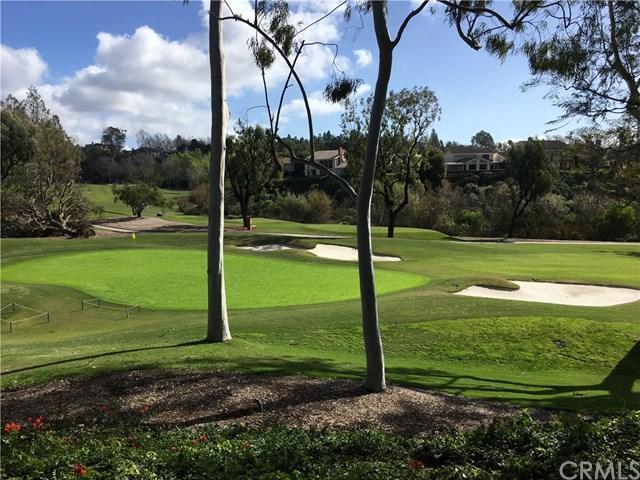 17 Sea Island Drive, Newport Beach, CA 92660 (#NP19012227) :: Fred Sed Group