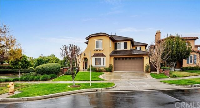 5 Magnolia Drive, Ladera Ranch, CA 92694 (#OC19011660) :: Z Team OC Real Estate