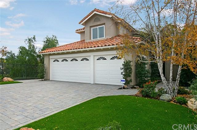 9 Milos, Laguna Niguel, CA 92677 (#OC19004346) :: Doherty Real Estate Group