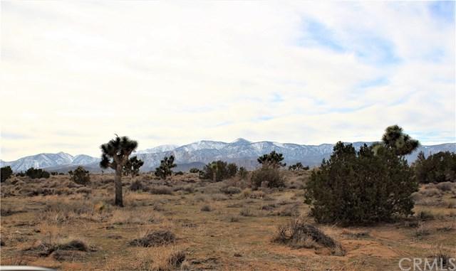 0 Smoke Tree Road, Phelan, CA 92371 (#EV19013725) :: Pam Spadafore & Associates