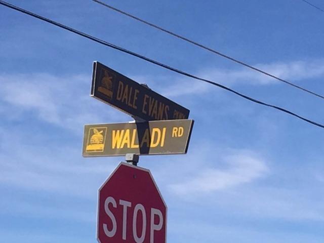 0 Waladi Road - Photo 1