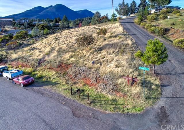 10818 Wheeler Drive, Kelseyville, CA 95451 (#LC19013875) :: The Laffins Real Estate Team