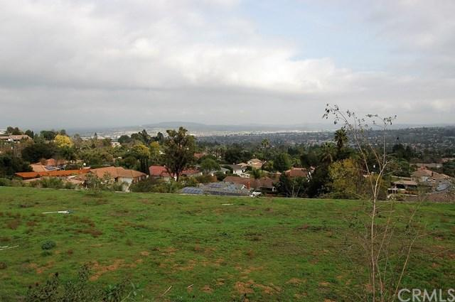 2774 Turnbull Canyon Road, Hacienda Heights, CA 91745 (#OC19010689) :: Hart Coastal Group