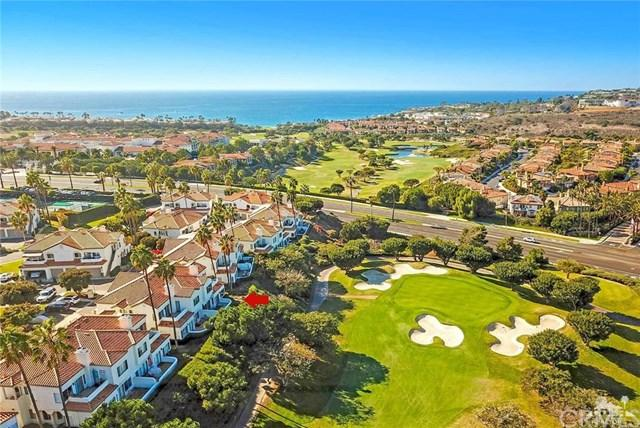 19 Wightman Court, Dana Point, CA 92629 (#OC19014425) :: Doherty Real Estate Group