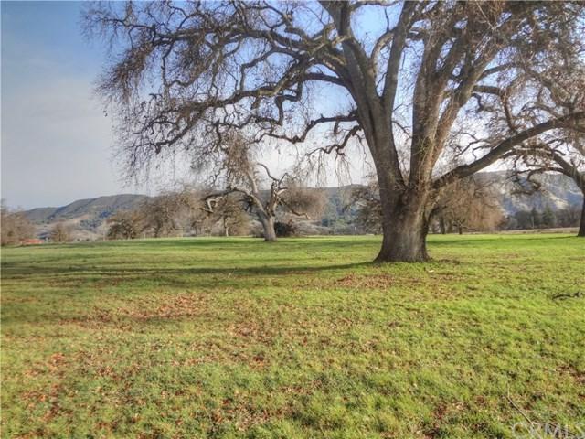 2175 Point Land Farms Drive - Photo 1