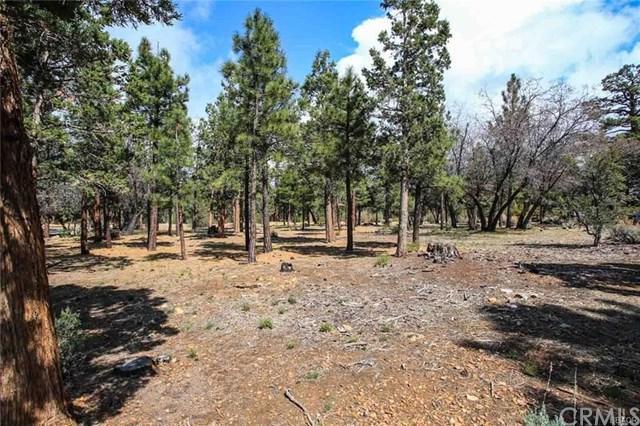0 Cedar Glen Drive, Big Bear, CA 92314 (#PW19015505) :: California Realty Experts