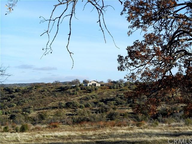 3135 Cottonwood Canyon Road, New Cuyama, CA 93254 (#PI19015409) :: RE/MAX Masters