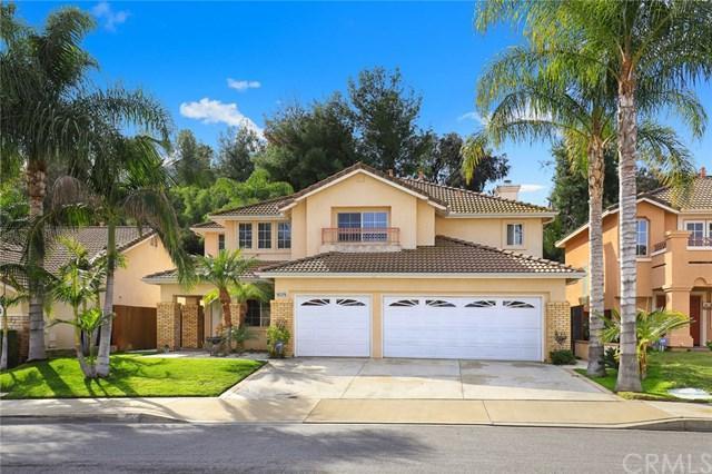 16376 Brancusi Lane, Chino Hills, CA 91709 (#TR19008696) :: Hart Coastal Group