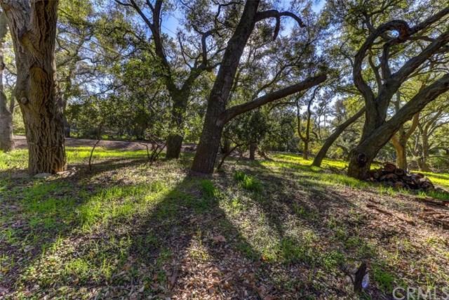 19411 Live Oak Canyon Road, Trabuco Canyon, CA 92679 (#OC19016767) :: Legacy 15 Real Estate Brokers