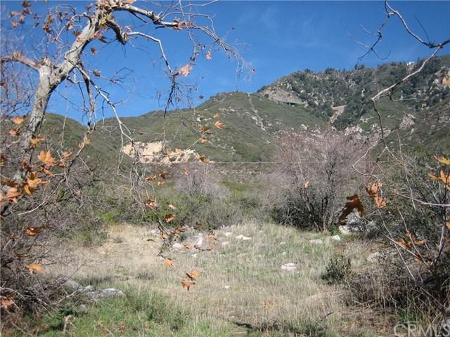 21 Hillview Rd, San Bernardino, CA 92404 (#EV19016846) :: Keller Williams Realty, LA Harbor