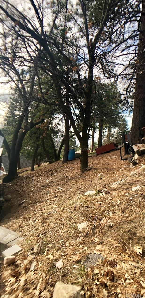 0 Panorama Drive, Running Springs Area, CA 92382 (#EV19023076) :: Team Tami