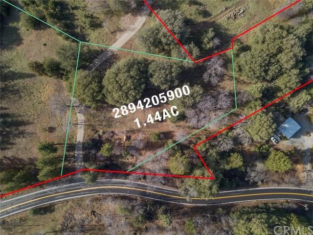 0 Pine Hills Road, Julian, CA 92036 (#SW19024461) :: J1 Realty Group