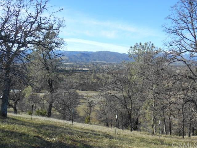 0 Sites Lodoga Road, Stonyford, CA 95979 (#SN19022864) :: Faye Bashar & Associates