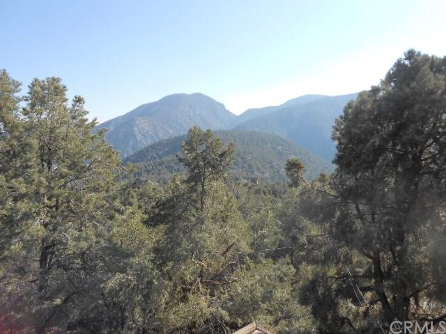 2212 Tirol Drive, Pine Mountain Club, CA 93225 (#DW19012516) :: The Laffins Real Estate Team