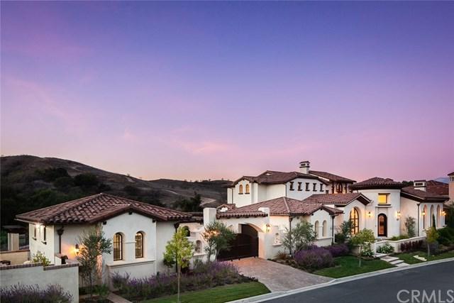 16358 Domani Ter, Chino Hills, CA 91709 (#OC19026120) :: Mainstreet Realtors®