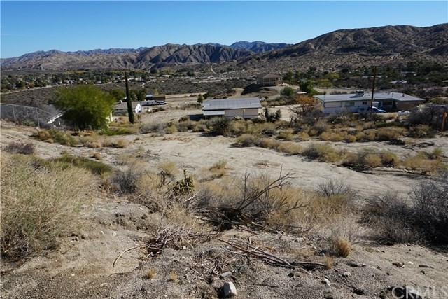 11455 Manana Drive, Morongo Valley, CA 92256 (#JT18287086) :: Mainstreet Realtors®