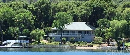 9010 Soda Bay Road, Kelseyville, CA 95451 (#LC19028324) :: The Laffins Real Estate Team