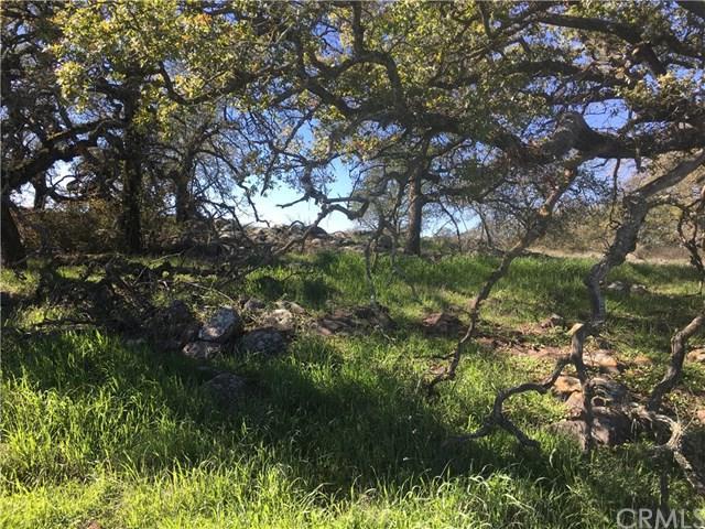 19800 Avocado Mesa, Murrieta, CA 92562 (#SW19030010) :: Team Tami