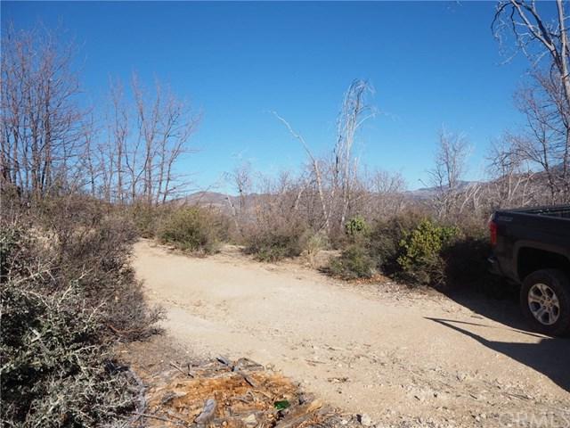 30025 Lignum Vitae, Cedar Glen, CA 92321 (#EV19030597) :: The Laffins Real Estate Team