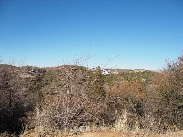 29939 Juniper Drive, Cedar Glen, CA 92321 (#EV19030618) :: The Laffins Real Estate Team