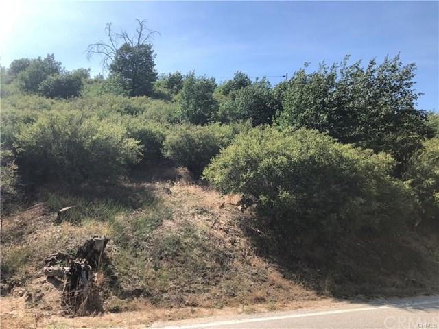 15 Hook Creek Road, Cedar Glen, CA 92321 (#EV19031016) :: The Laffins Real Estate Team