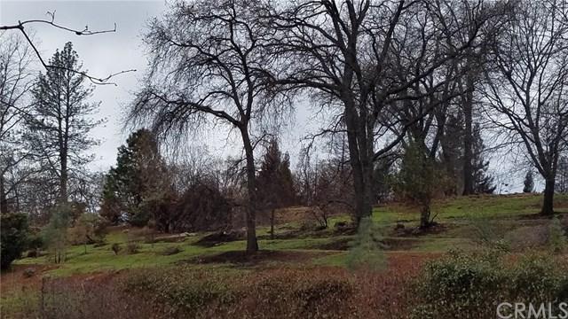 438 Plantation Drive, Paradise, CA 95969 (#PA19031616) :: Go Gabby
