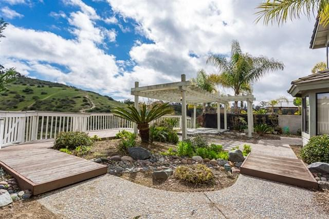 1143 Kildeer Court, Encinitas, CA 92024 (#190008138) :: The Laffins Real Estate Team