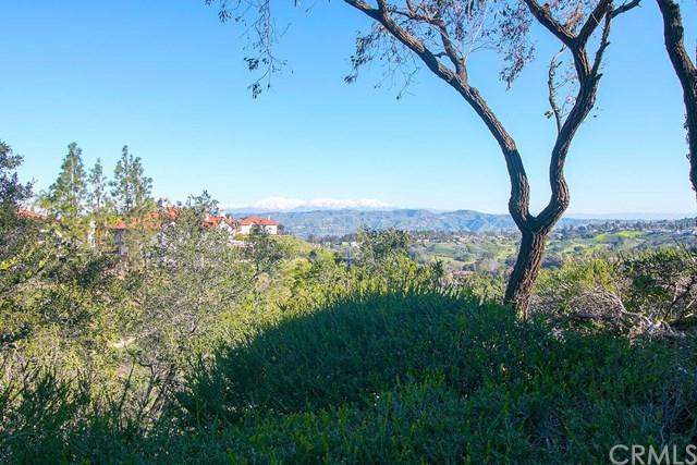805 S Jacaranda Way, Anaheim Hills, CA 92807 (#PW19031369) :: The Darryl and JJ Jones Team