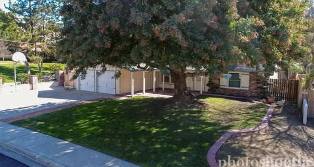 11580 Orion Street, Riverside, CA 92505 (#MB19035224) :: The Laffins Real Estate Team
