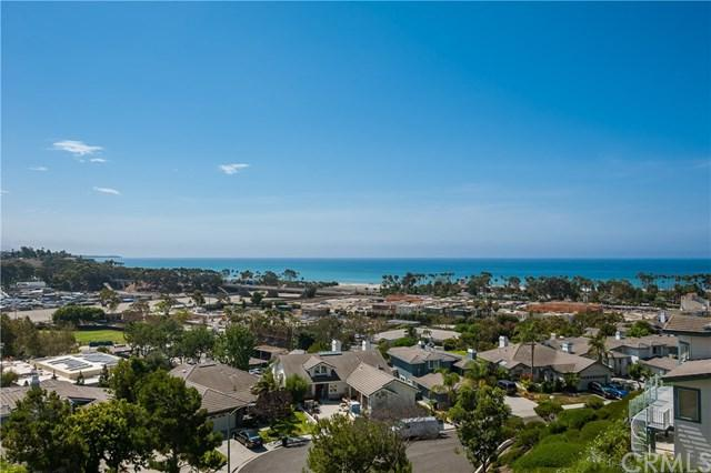 25382 Sea Bluffs Drive #8106, Dana Point, CA 92629 (#OC19035177) :: Z Team OC Real Estate