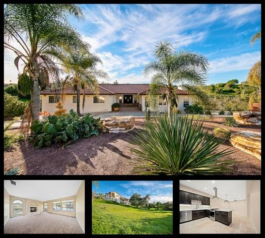 2230 Calle Dos Lomas, Fallbrook, CA 92028 (#190008759) :: The Laffins Real Estate Team